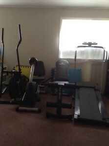 Elliptical, Bike, Weight Bench, and Treadmill