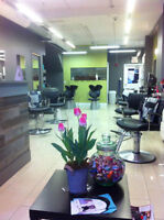 Tresses Hair Studio looking for new stylist
