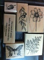 Different stampin up stamps