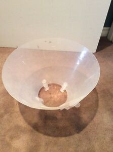 Dog Recovery Cone  Prince George British Columbia image 2
