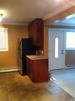 Renovated 2br in Queen Mary Park- Half Price for June