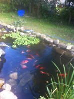 Aquatic liner for indoor and outdoor ponds - fish grade safe