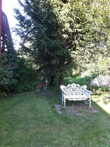 Beautful LOT for sale in PSC - 5 minutes from downtown Montreal