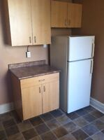 1 bedroom plus den apt on Main St close to downtown - Jan 1