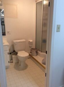 One bedroom furnished apartment for short term rental  Peterborough Peterborough Area image 3
