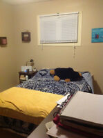 1 Furnished Room (utilities included) behind 8th str. Superstore