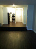 Downtown 1 1/2 condo for rent. Newly renovated and spacious!