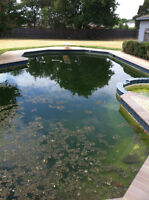SWIMMING POOL REMOVALS FREE QUOTES LOWEST PRICE