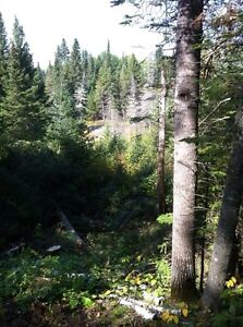 Secluded 74 Acre Property just past Kakabeka