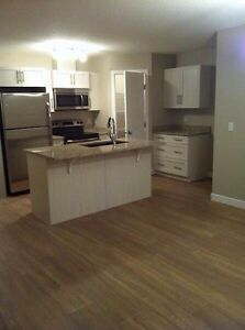 Avail June 26, Beautiful Condo for rent