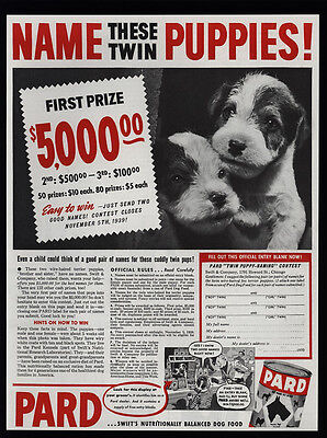 1939 Name Cute WIRE-HAIRED TERRIER Puppies - PARD Dog Food Contest VINTAGE AD