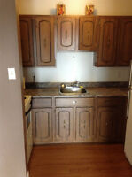 One Bedroom unit available immediately Smooth Rock Falls $550