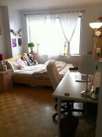 ROOMATE wanted to share AWESOME LUNA APT near MCGILL