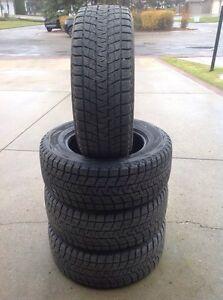 285/60R18 Bridgestone Blizzak DMV1