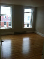 Roomate needed-Downtown Apartment 500+utilities Aug15th/Sep 1st