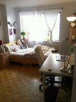Looking for ROOMATE to share GORGEOUS APT near MCGILL