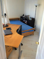 Furnished Room - Bay & Gerrard Condo - Available Immediately!