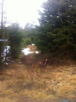 1/2 Acre Deeded/Surveyed Land