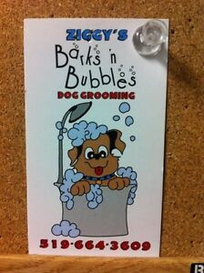 Ziggy's barks n bubbles dog grooming