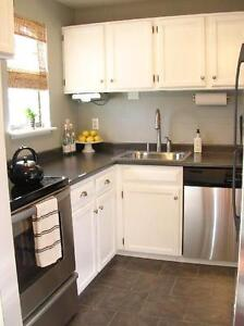 Kitchen cabinets updated done in only a few days!!