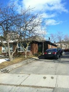 FOR RENT: Amazing House 3 + 2, FINISHED BASEMENT with 2 rooms