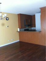 BIG Semi-Furnished. 1100 Sqft .Amazing,  4 1/2. Downtown. $1400