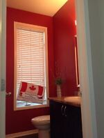 HOUSE  PAINTING - DAVID JAMES PAINTING - 613 933 8119