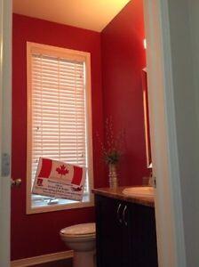 David James Painting Cornwall Ontario image 3
