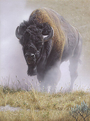 Daniel Smith OUT OF THE DUST giclee canvas BISON #199/200