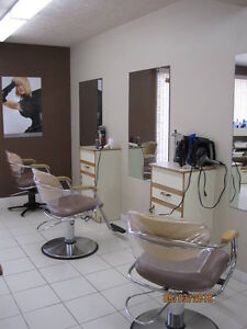 5 Chair salon/spa for lease...fully furnished in Hanover Ont Kitchener / Waterloo Kitchener Area image 2