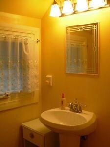 Room(s) in Tillsonburg character house London Ontario image 3
