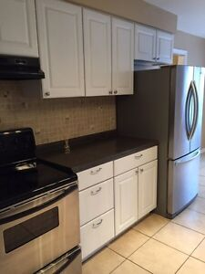 Whole house 6 bdrm for RENT! Large, bright, great Location!