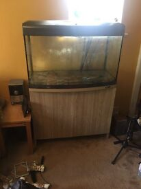 Aqua start 900aquarium f185L fish tank complete setup