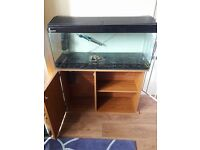 2 fish tanks for sale