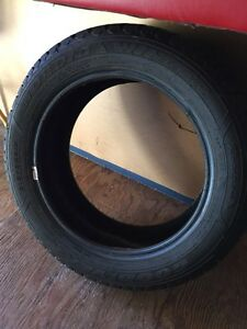 4Goodyear Nordic winter tires