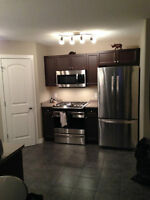 Furnished Timberlea house available June 18th
