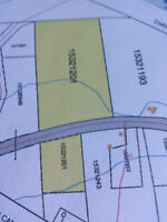 21.2 plus Acres for sale Beachmont Road