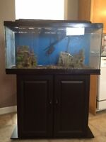 Fully functional fish tank