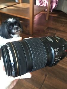 Canon 70-300mm zoom lens