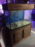 60 gal Fish Tank with Stand and Canopy