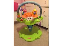 Fisher price bounce and spin frog