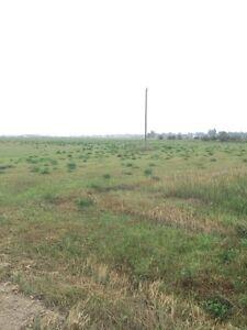 10 acres near Estevan /Bienfait  Regina Regina Area image 1