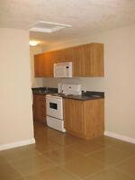 1 bdrm suite, 1-2 month rental by U of C, Foothills, & transit