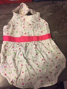 Adorable Outfits for medium dogs $5-10 Prince George British Columbia image 2