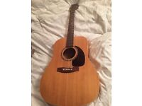 Norman B18 Acoustic Guitar Trade Fender