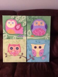 4 owl pictures