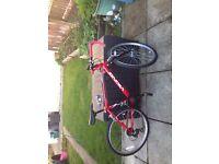 Viking child road bike