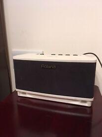 Roland Cube Lite Amp