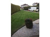 Garden and ground maintenance/power washing/grasscutting/hedgecutting