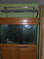 Fish Tank, Oak Cabinet, Accessories + More Salt Water Tank